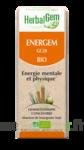 Herbalgem Energem Solution buvable bio Fl cpte-gttes/30ml à CHASSE SUR RHONE