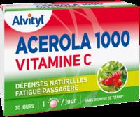 Govital Acerola 1000 à CHASSE SUR RHONE