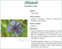 Bleuet Fleur Iphym, Entière, Sac 25 G à CHASSE SUR RHONE