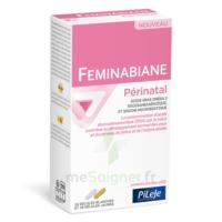 Pileje Feminabiane Périnatal 28 Gélules Blanches Et 28 Gélules Jaunes à CHASSE SUR RHONE