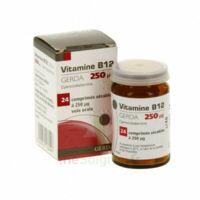 Vitamine B12 Gerda 250 Microgrammes, Comprimé Sécable à CHASSE SUR RHONE