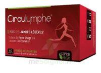 Santé Verte Circulymphe Triple Actions B/60 à CHASSE SUR RHONE