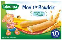 Bledina Mon 1er boudoir (6x4 biscuits) à CHASSE SUR RHONE