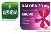 Kaloba 20 Mg Comprimé Pelliculé Plq/21 à CHASSE SUR RHONE