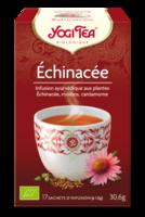 Yogi Tea Echinacee à CHASSE SUR RHONE