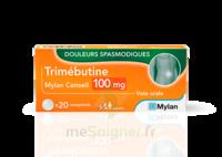 Trimebutine Mylan Conseil 100 Mg, Comprimé à CHASSE SUR RHONE