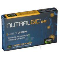 Nutralgic Comprimés inflammations B/10 à CHASSE SUR RHONE