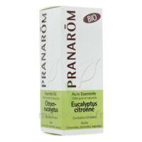 Huile Essentielle Eucalyptus Citronne Bio Pranarom 10 Ml à CHASSE SUR RHONE