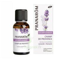 Les Diffusables Champs de Provence à CHASSE SUR RHONE
