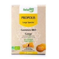 Herbalgem Propolis large spectre Gomme bio B/24 à CHASSE SUR RHONE