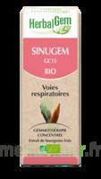 Herbalgem Sinugem Solution buvable bio Spray/15ml à CHASSE SUR RHONE