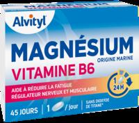 Govital Magnésium Vitamine B6 Comprimés B/45 à CHASSE SUR RHONE