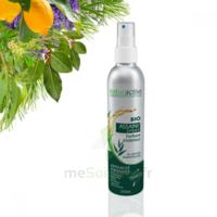 Naturactive Assaini'spray 200ml à CHASSE SUR RHONE