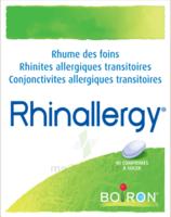 Boiron Rhinallergy Comprimés B/40 à CHASSE SUR RHONE