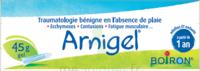 Boiron Arnigel Gel T/45g à CHASSE SUR RHONE